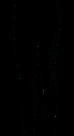 Puma-graphic-legging-dames-zwart-wit-84733301