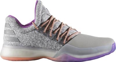 Adidas harden vol 1 basketbal grijs zilver bw0549