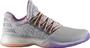 Adidas harden vol 1 basketbal grijs zilver bw0549_1